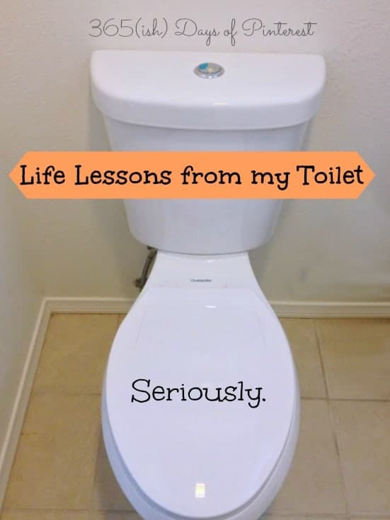 Day 290: Life Lessons from my Toilet