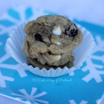 Soft Baked Cranberry White Chocolate Cookies