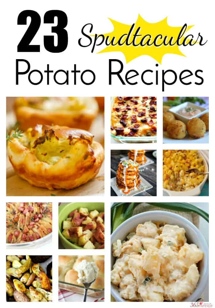 None of these potato recipes are boring. Every one is packed with flavor and I'm sure you'll find something for your holiday menu, picnic, BBQ, or family dinner! via @nmburk
