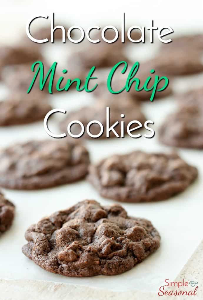 A rich chocolate cookie bursting with mint, these Chocolate Mint Chip Cookies will be the star of any dessert tray. Just add milk! via @nmburk
