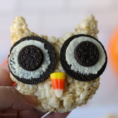 closeup of owl treat