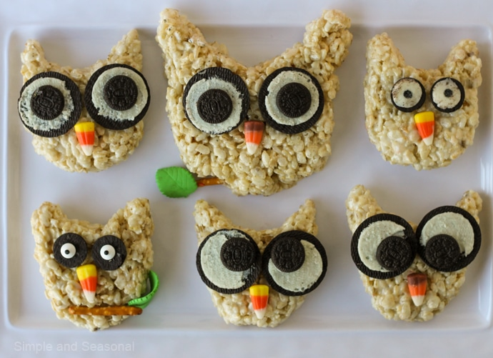 platter of 6 owls with different eye options